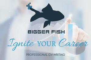 Ignite Your Career - Professional CV Writing