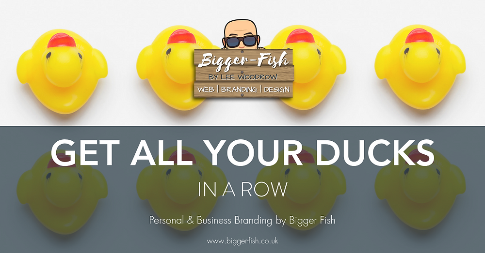 Get all your ducks in a row - Bigger Fish Personal Branding