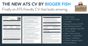ATS CV by Bigger Fish