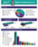 2017 Digital Publishing Survey