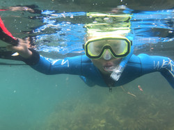 Guided Snorkel, Dive