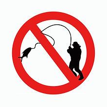 No Fishing.jpg