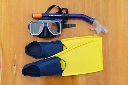 Mask & Snorkel.JPG