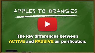 Apples to Oranges.jpg