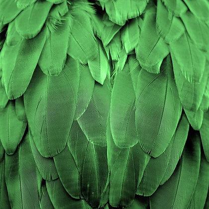 Pena Verde