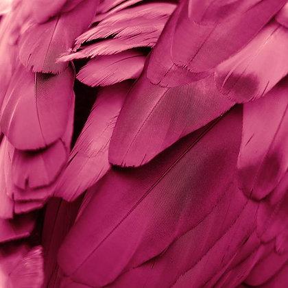Pena Pink