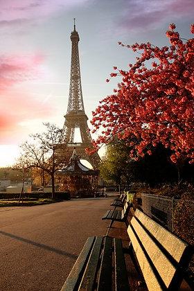 Torre Eiffel VI, Paris- França