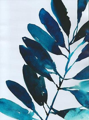 Folha Azul