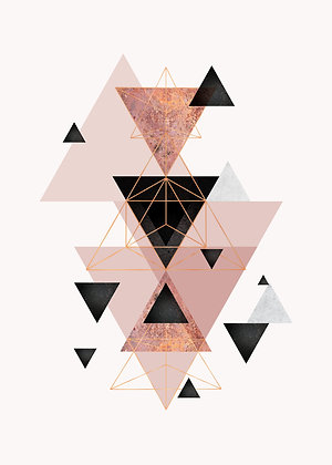 Geometric Collection Rose