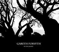 gareth+album+cover.jpg