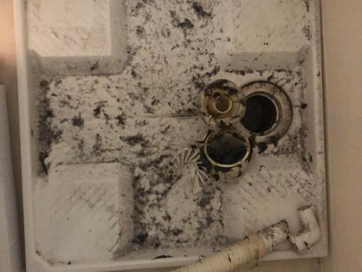 洗濯機の排水溝のつまり除去