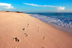 footprints_edited.jpg