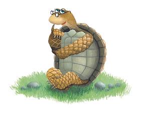 Shelly_Turtle_Hi-Res_3mb.tif
