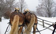 sleigh ride 2.jpg