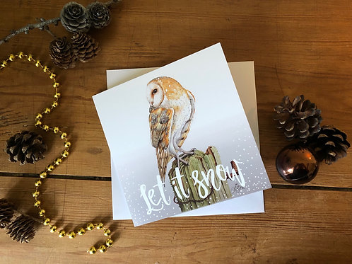 Pack of five Winter Barn Owls