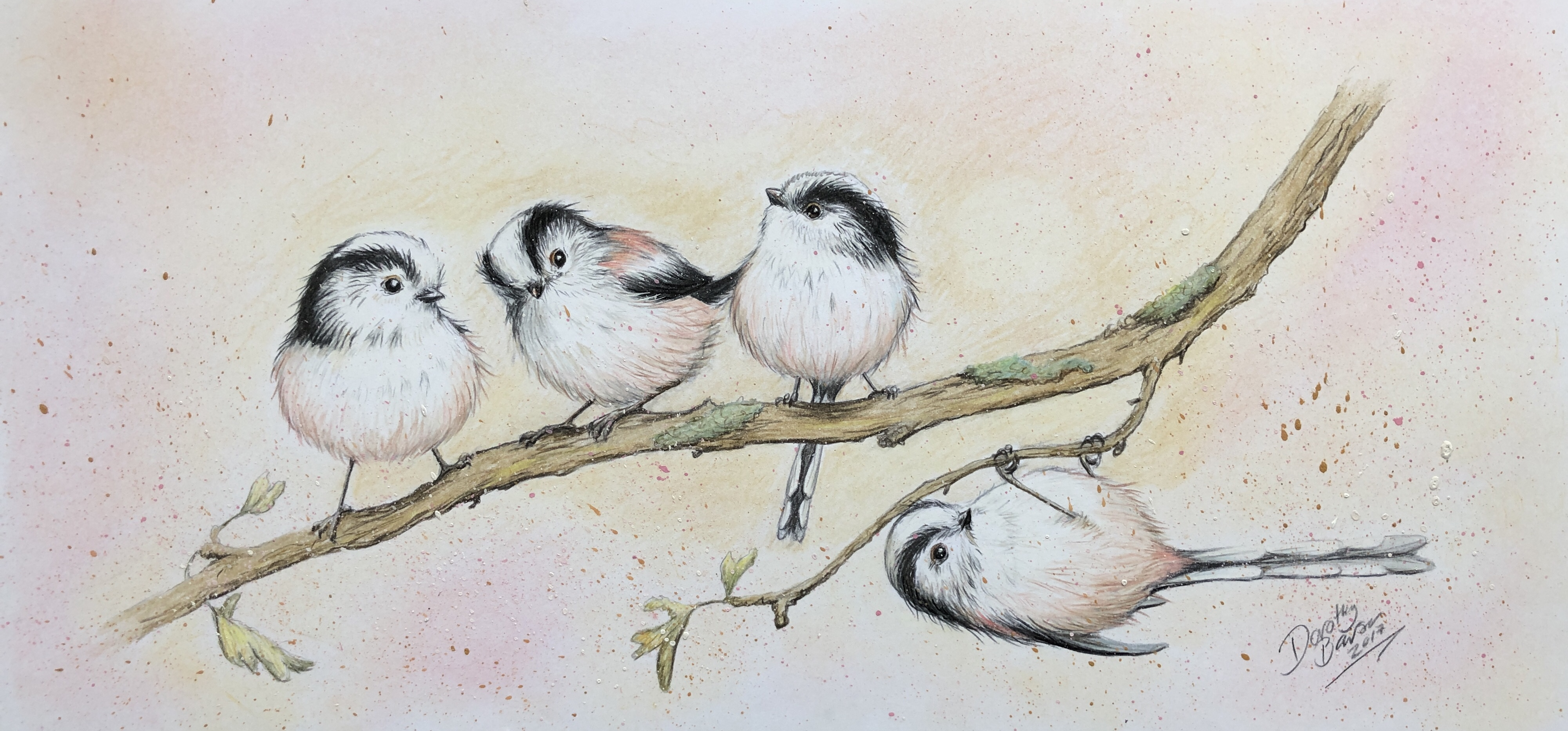 Little long-tailed tits