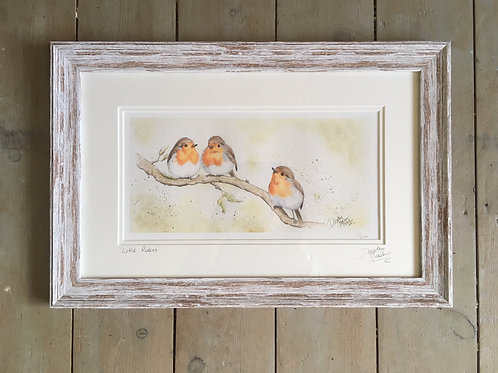 Little Robins framed limited edition print
