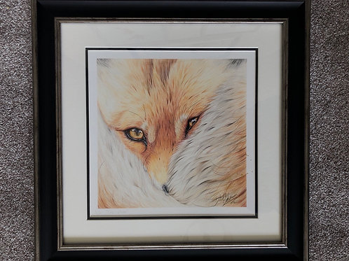 The Vixen framed print