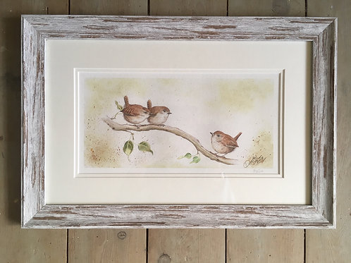 Little Wrens framed limited edition print