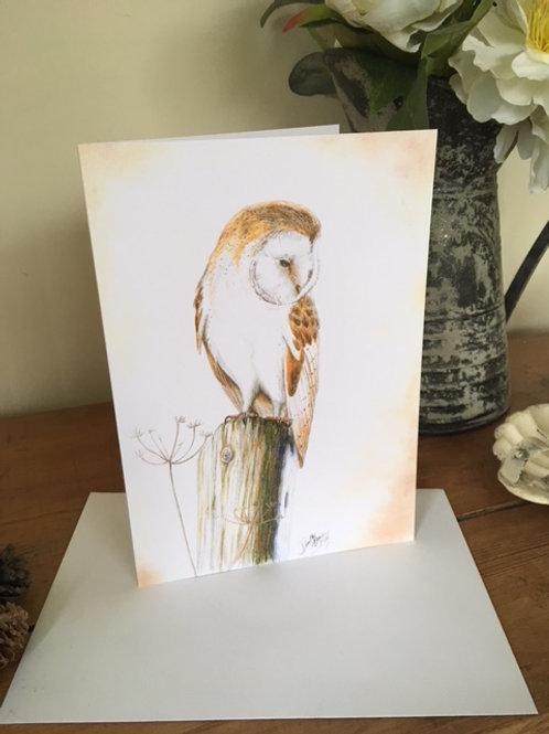 Barn Owl greetings card