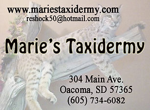 Marie's Taxidermy - Oacoma.jpg