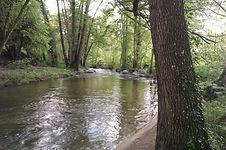 El Molino: el río