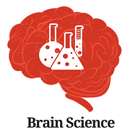 three brains with science chemicals tools and people taking