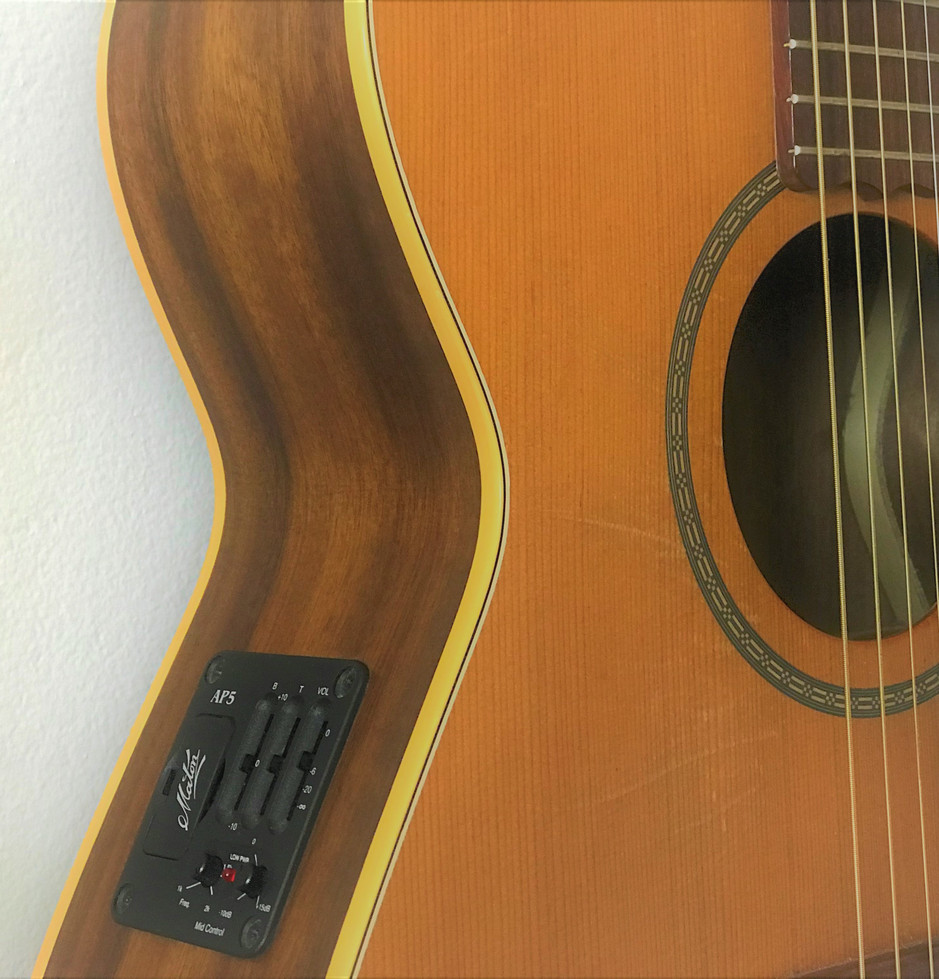 EBG808L Maton - the workhorse.  Great for stage or around the camp fire.