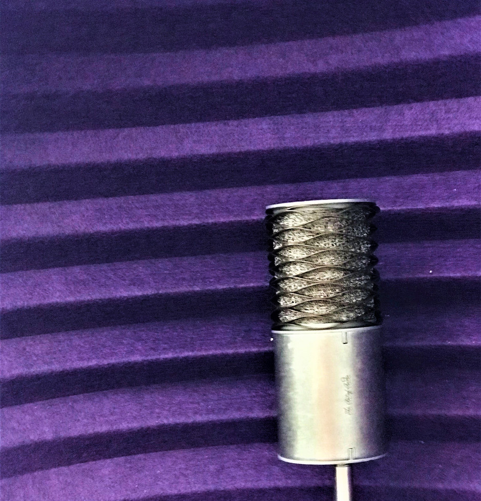 Aston 'Origin' - Great little all-rounder mic for vox, amps, direct input....