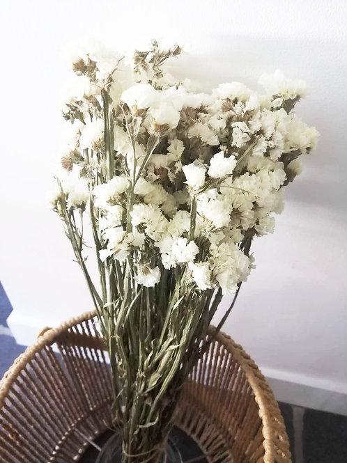 Fleurs séchées limoniums blancs X 1 bouquet