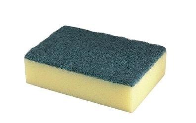 Professional Sponge Scourer- Pack of 10