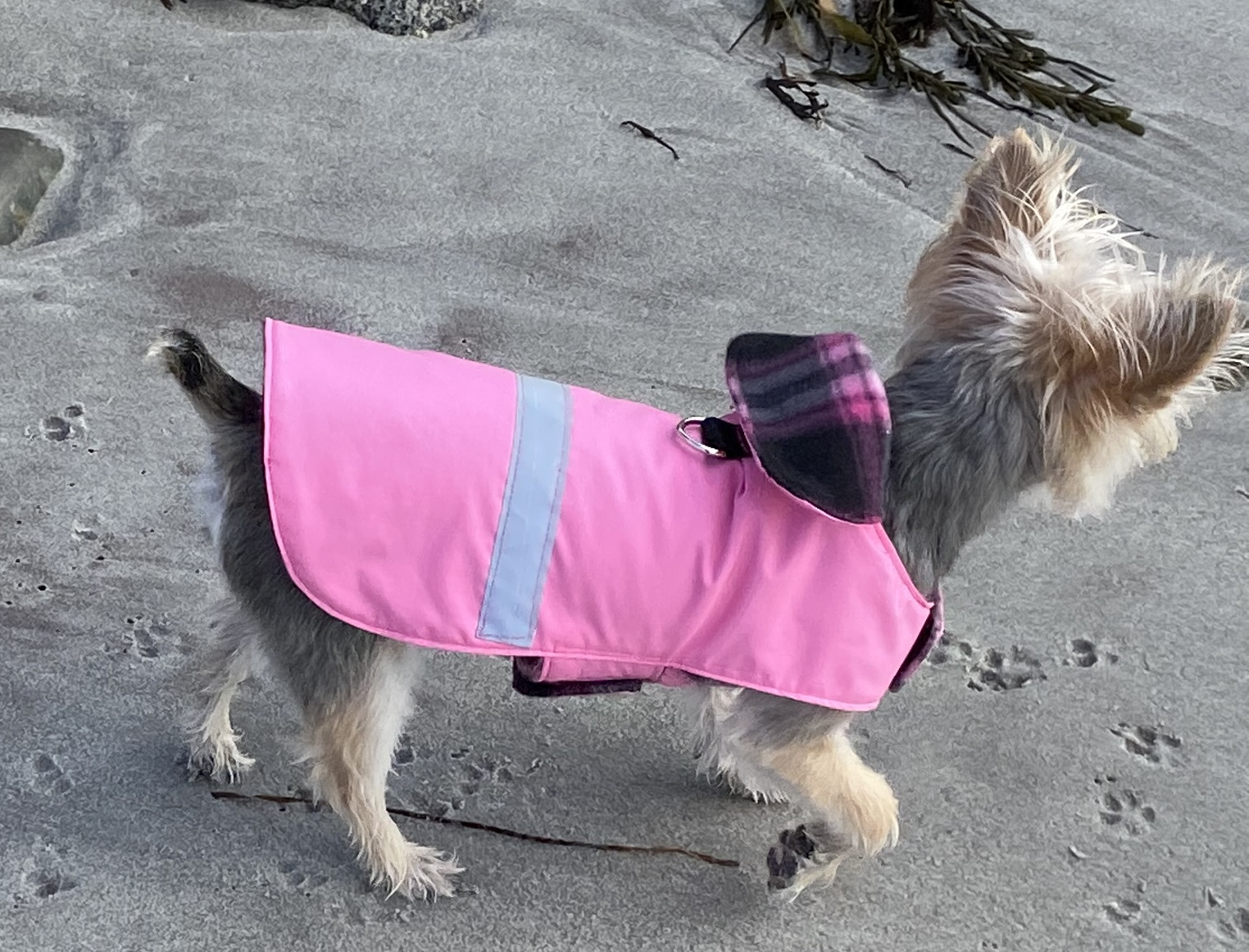 RWP Coat Pink with pink and charcoal fle