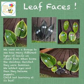 Leaf Faces