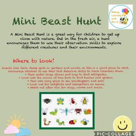 Mini Beast Hunt