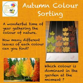 Autumn Colour Sorting