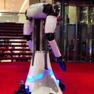 Robot Amigo