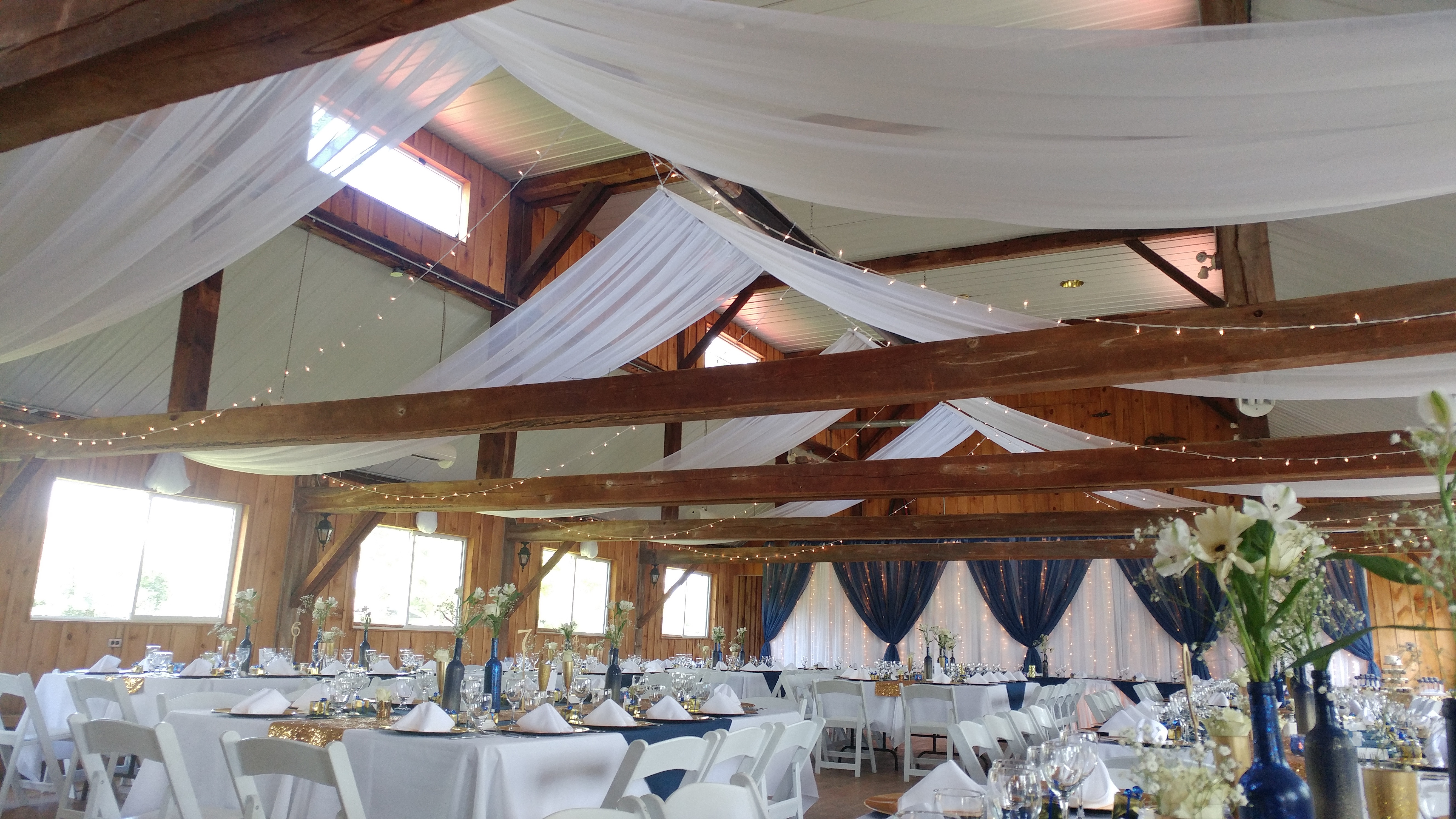 Ceiling Drape & Lights