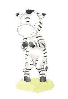Shy Zebra.jpg
