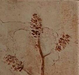 pine imprints