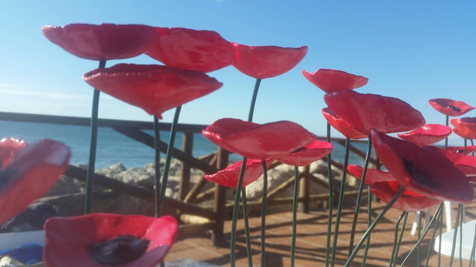 Selling poppies by the beautiful Med.