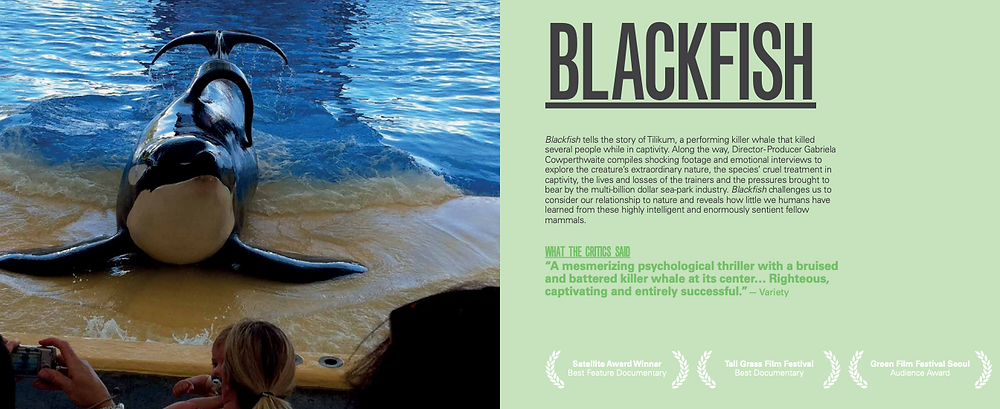 Blackfish is a prime example of a film inspiring impact - courtesy of impactguide.org