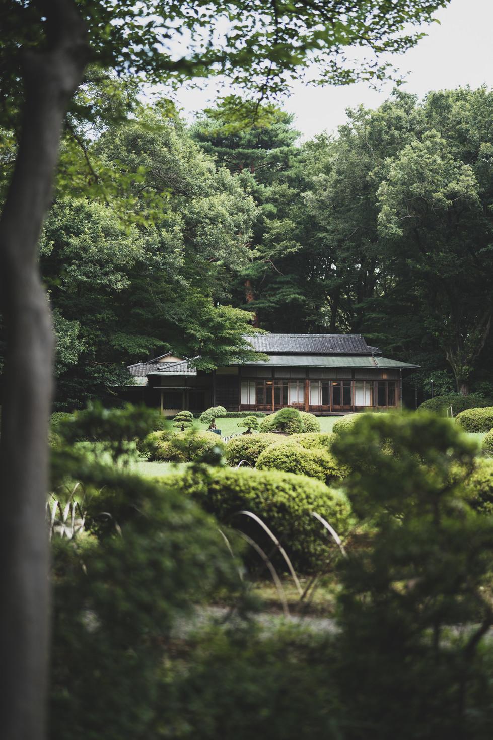 Meiji Jingu Tea House