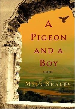 pigeonboy