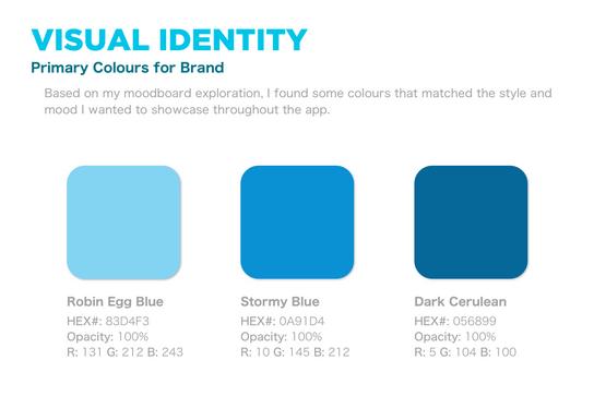 53 - VISUAL IDENTITY, primary brand colo