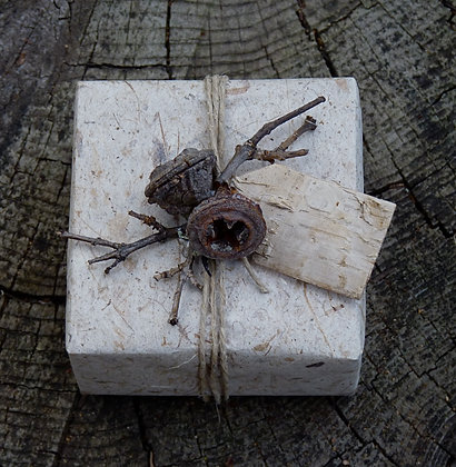 Boxed Bath Salts - Natural with Twigs