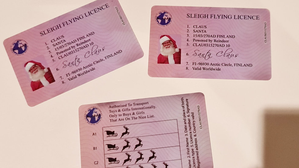 Santa's Lost Flying License
