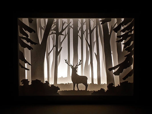 papercut shadow box - deer in the woods