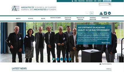 ACE website.png