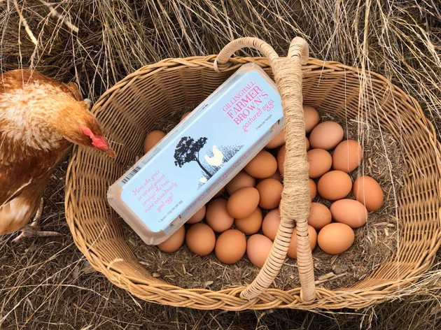 Farmer Brown's Happy Hens