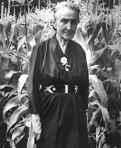 Georgia O'Keeffe (broche d'Alexander Calder)